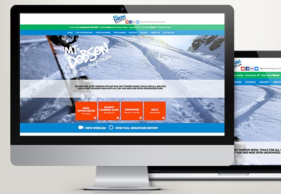 Mt Dobson Online